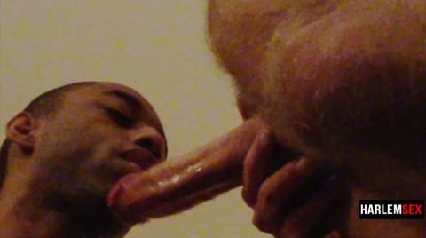 L18788 HARLEMSEX gay sex porn hardcore fuck videos bj blowjob handjob wank deepthroat mouthfuck cumload xxl bro cock spunk bbk bareback 11