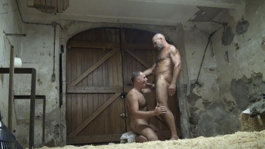 Bataille sexuelle entre BEARS