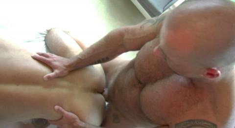 L19454 ALPHAMALES gay sex porn hardcore fuck videos butch hairy scruff males mucles xxl cocks cum loads 014