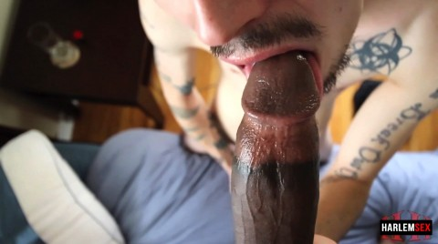 L18711 HARLEMSEX gay sex porn hardcore videos black thug xxl cocks us cum deepthroat 18671