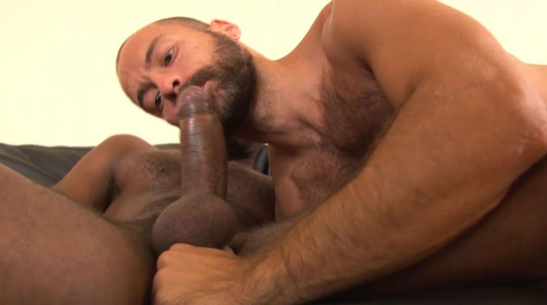 L20571 MISTERMALE gay sex porn hardcore fuck videos butch hairy hunks macho men muscle rough horny studs cum sweat 15