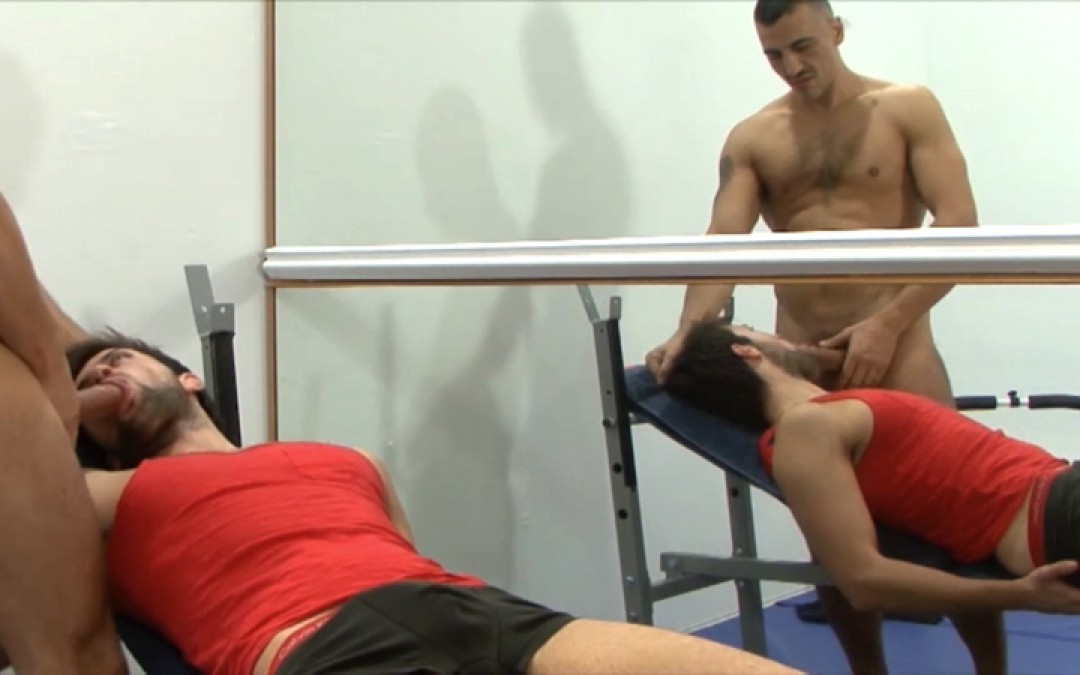 Gay muscle and obedience