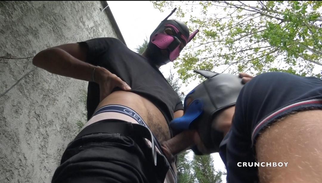 Duel bareback de PUPPY dans un parc de Bordeaux