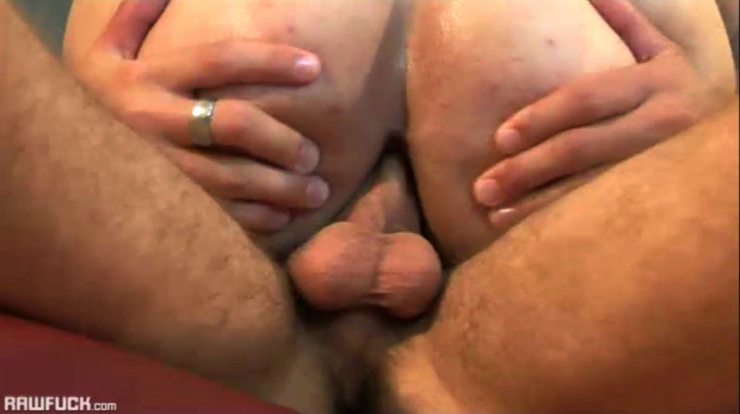 Young gay stallions with enormous cocks