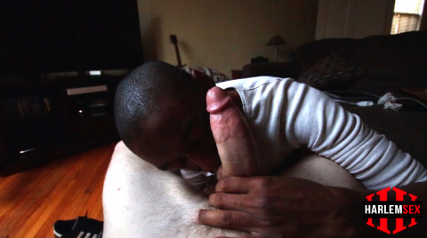 L18753 HARLEM gay sex porn hardcore fuck videos deepthroat blowjob suck mouthfuck cum swallow sperm 11