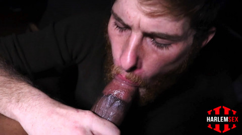 L18784 HARLEMSEX gay sex porn hardcore fuck videos bj blowjob handjob wank deepthroat mouthfuck cumload xxl bro cock spunk bbk bareback 11