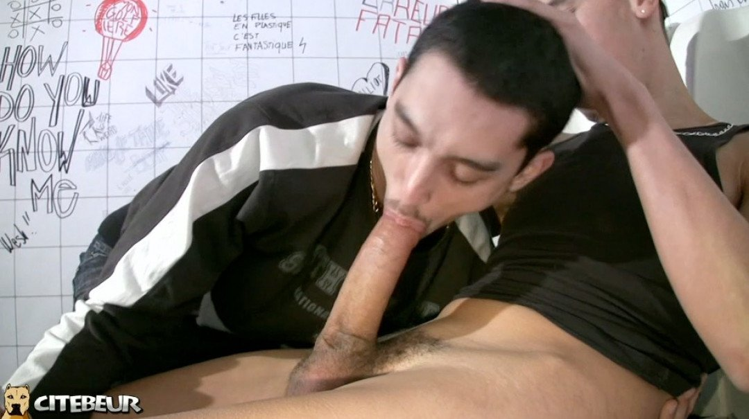 Very big cock to suck and to fuck your ass