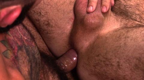 L17764 ALPHAMALES gay sex porn hardcore fuck videos brit lads hunks xxl cum loads 002