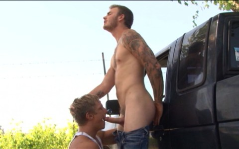 l7793-mistermale-gay-sex-porn-hardcore-videos-hunks-studs-muscle-men-gods-butch-rough-tough-beefcake-manly-viril-male-otters-bears-hairy-wolves-naked-sword-wilde-road-008