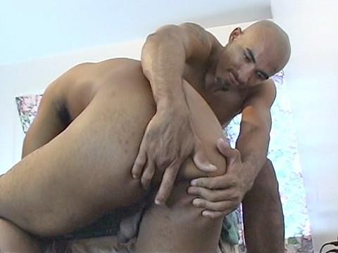 duo pitbull universblack  give a thug a bone-5