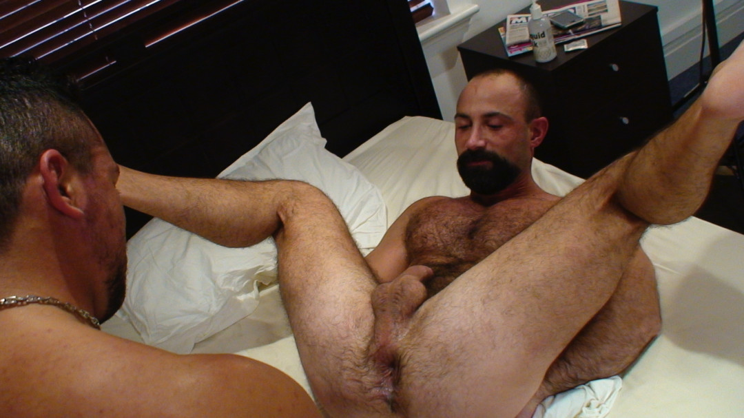 My gay morning wood is going to please you