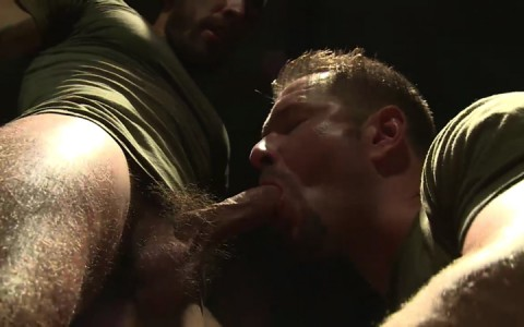 L16074 MISTERMALE gay sex porn hardcore fuck videos males beefy hairy studs hunks 06