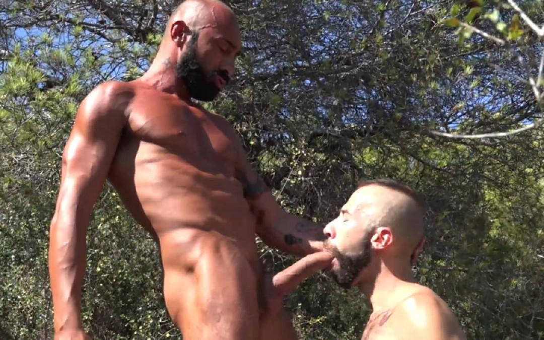 l13354-cazzo-gay-sex-porn-hardcore-videos-made-in-berlin-german-geil-fetish-bdsm-010
