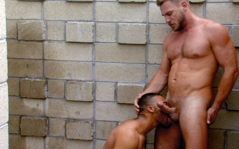 l12894-mistermale-gay-sex-porn-hardcore-videos-003