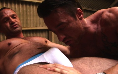 l7301-cazzo-gay-sex-porn-hardcore-alphamales-out-on-the-farm-003