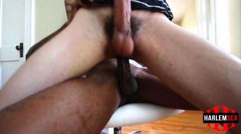 L18698 HARLEMSEX gay sex porn hardcore fuck videos us blowjob bbk cum xxl cum cocks harlem black 006