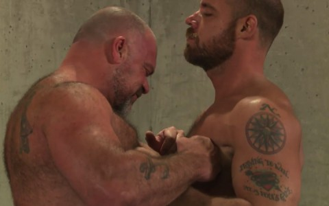 L16137 MISTERMALE gay sex porn hardcore fuck videos males beefy hairy studs hunks 04