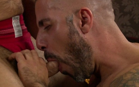 l9164-mistermale-gay-sex-porn-hardcore-videos-hairy-hunks-muscle-studs-tatoos-beefcake-scruff-males-male-male-butch-dixon-bear-with-me-001