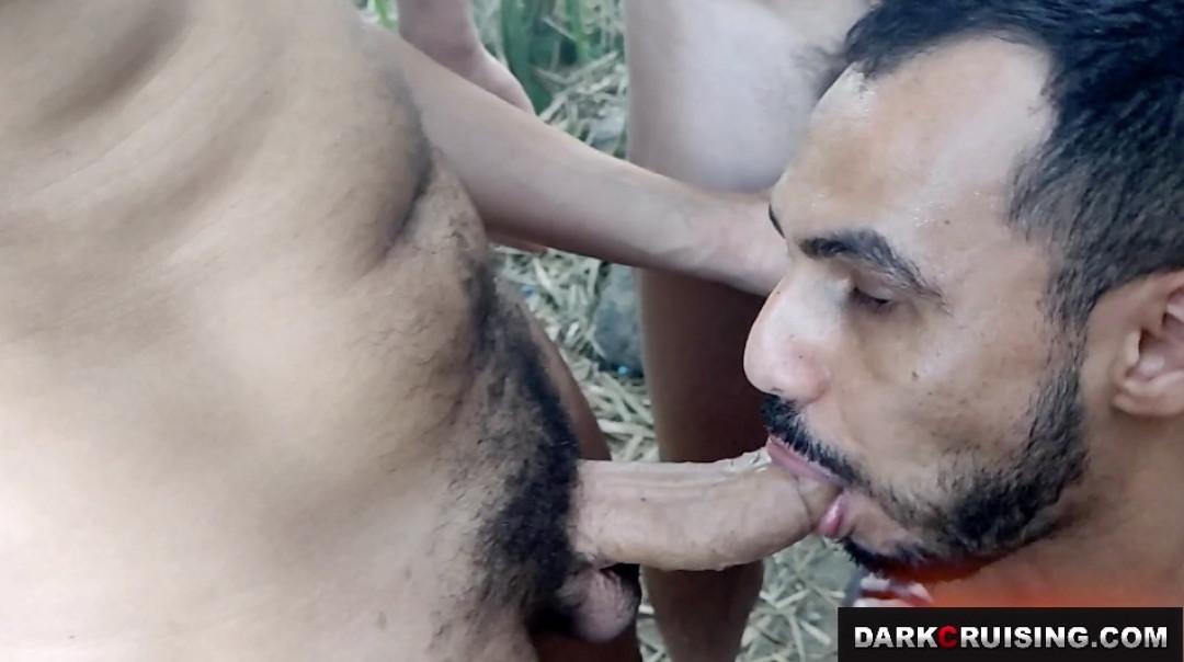 Orgie gay dans les bois