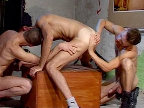 touze gay 9