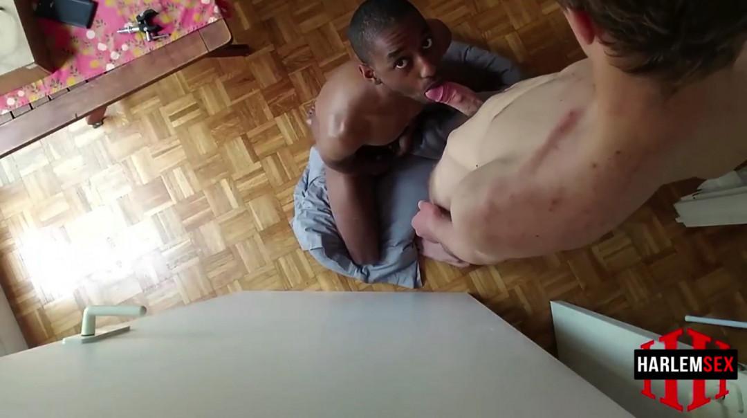 L19133 HARLEMSEX gay sex porn hardcore fuck videos black blowjob deepthroat mouthfuck bj facecum hung young macho lads xxl cocks 08