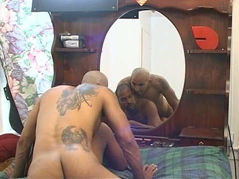 duo pitbull universblack  give a thug a bone-6
