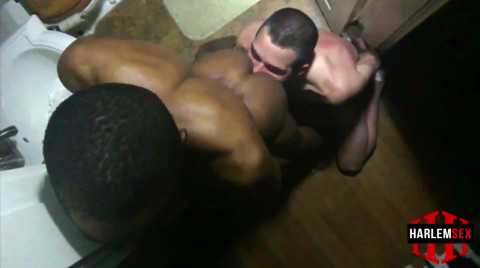 L19170 HARLEMSEX gay sex porn hardcore fuck videos black blowjob deepthroat mouthfuck bj facecum hung young macho lads xxl cocks 12