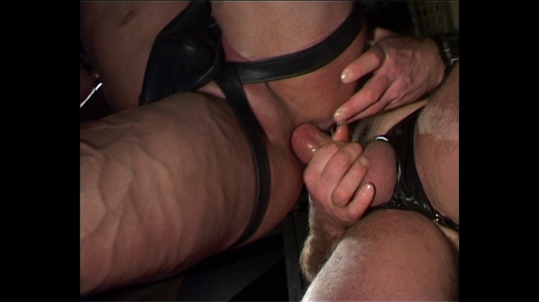 MUSCLES, LEATHER AND HOODS
