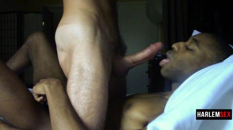 L18788 HARLEMSEX gay sex porn hardcore fuck videos bj blowjob handjob wank deepthroat mouthfuck cumload xxl bro cock spunk bbk bareback 19