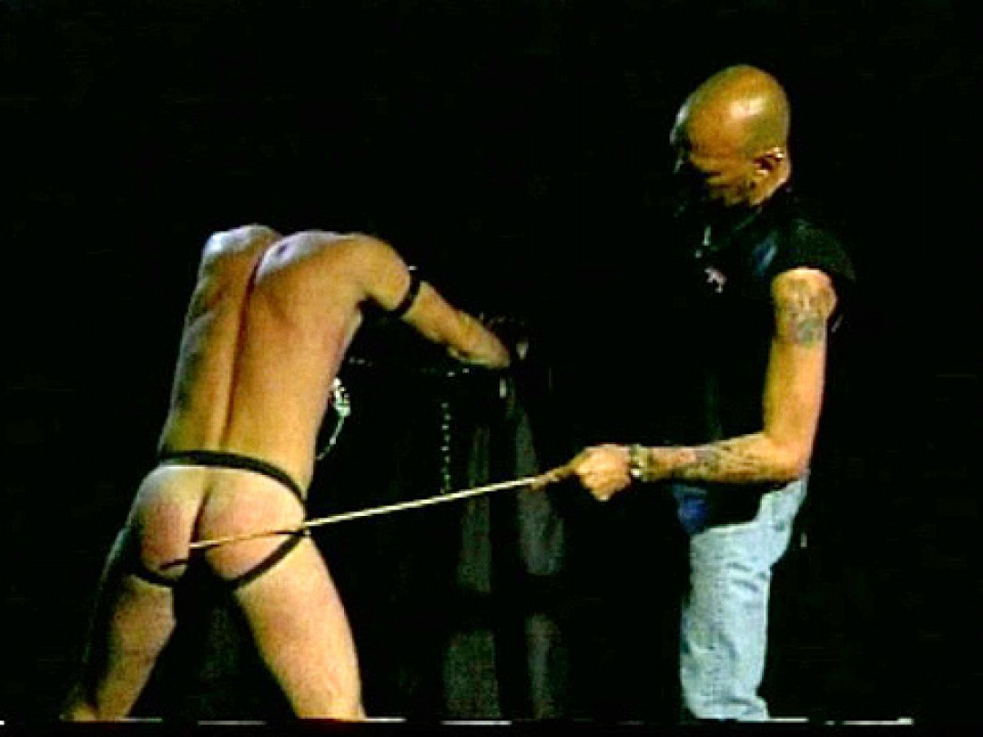 TRAINED SLAVE