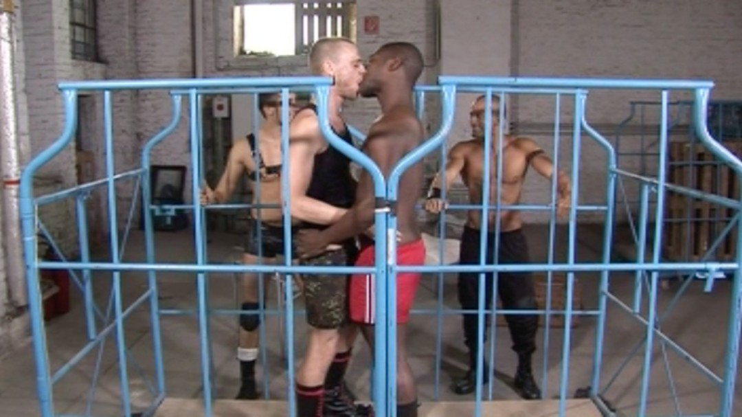 The battle of  the Sex-Gladiators