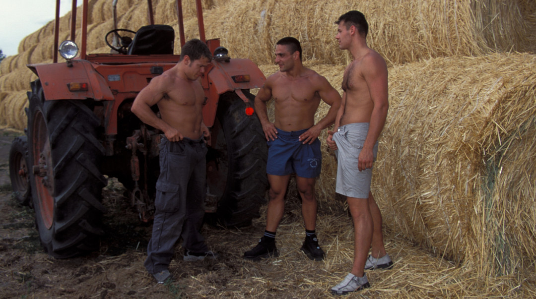 Three muscular and virile farmers