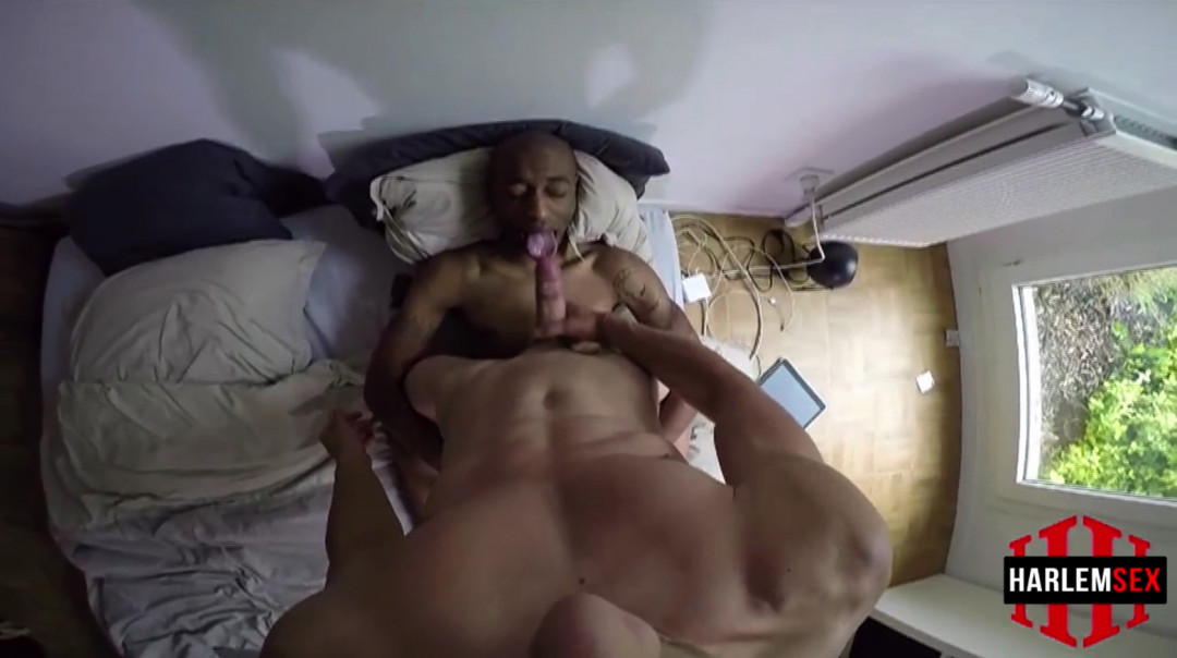 L19129 HARLEMSEX gay sex porn hardcore fuck videos black blowjob deepthroat mouthfuck bj facecum hung young macho lads xxl cocks 14