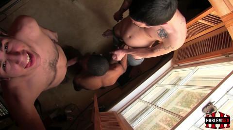 L19244 HARLEMSEX gay sex porn hardcore fuck videos black blowjob deepthroat mouthfuck bj facecum hung young macho lads xxl cocks 03