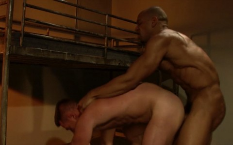 l15750-mistermale-gay-sex-porn-hardcore-fuck-videos-butch-macho-hunks-muscle-studs-17
