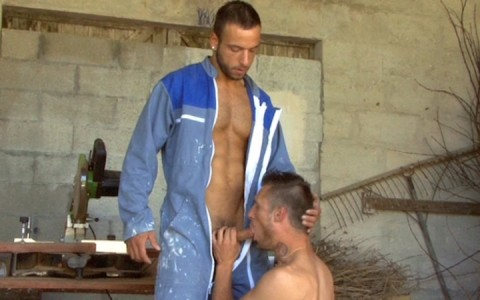l9154-mistermale-gay-sex-porn-hardcore-videos-hairy-hunks-muscle-studs-tatoos-beefcake-scruff-males-male-male-uknm-al-fresco-fuckers-006