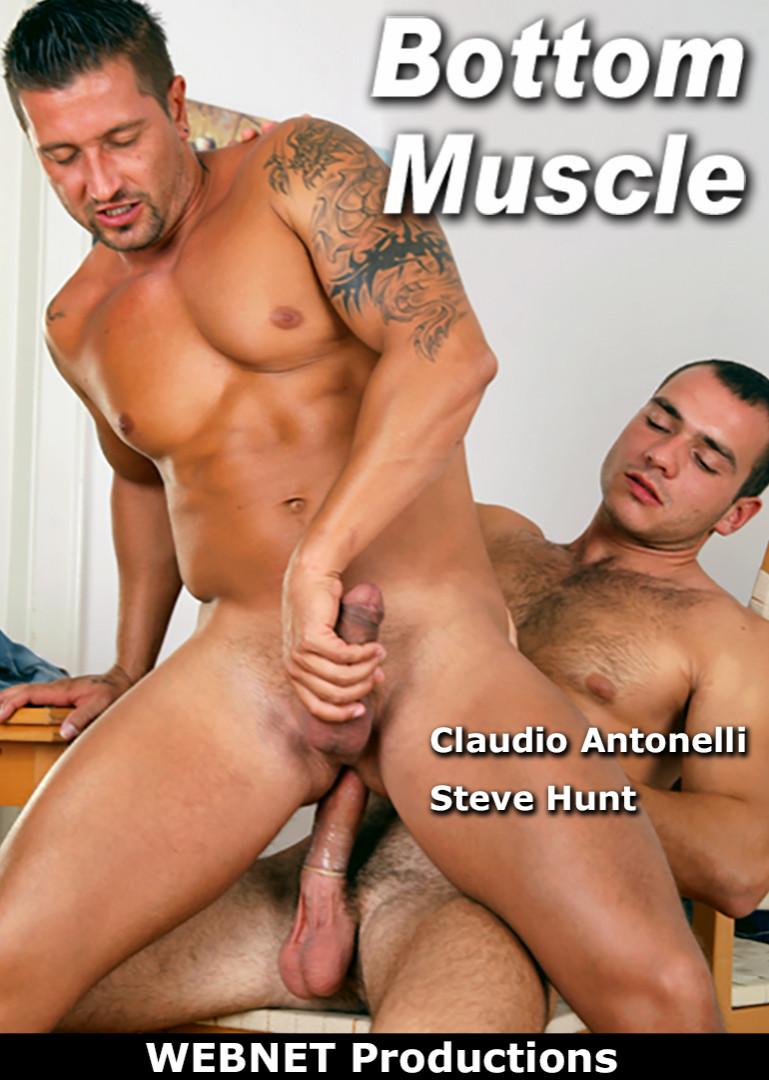 bottom muscle
