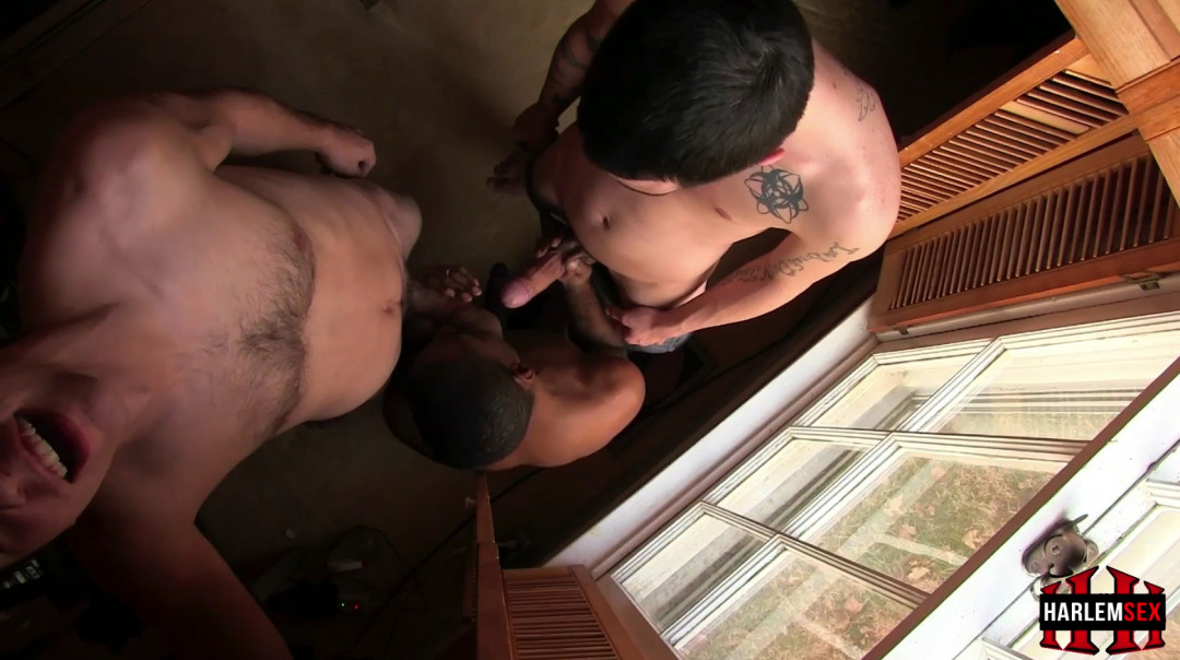 L19244 HARLEMSEX gay sex porn hardcore fuck videos black blowjob deepthroat mouthfuck bj facecum hung young macho lads xxl cocks 04