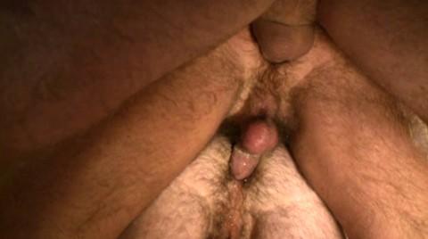 L16085 MISTERMALE gay sex porn hardcore fuck videos daddy hunks scruff hairy beefcakes 11