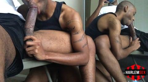 L18728 HARLEMSEX gay sex porn hardcore fuck videos bbk bareback deepthroat cum load xxl cock blowjob slut 010
