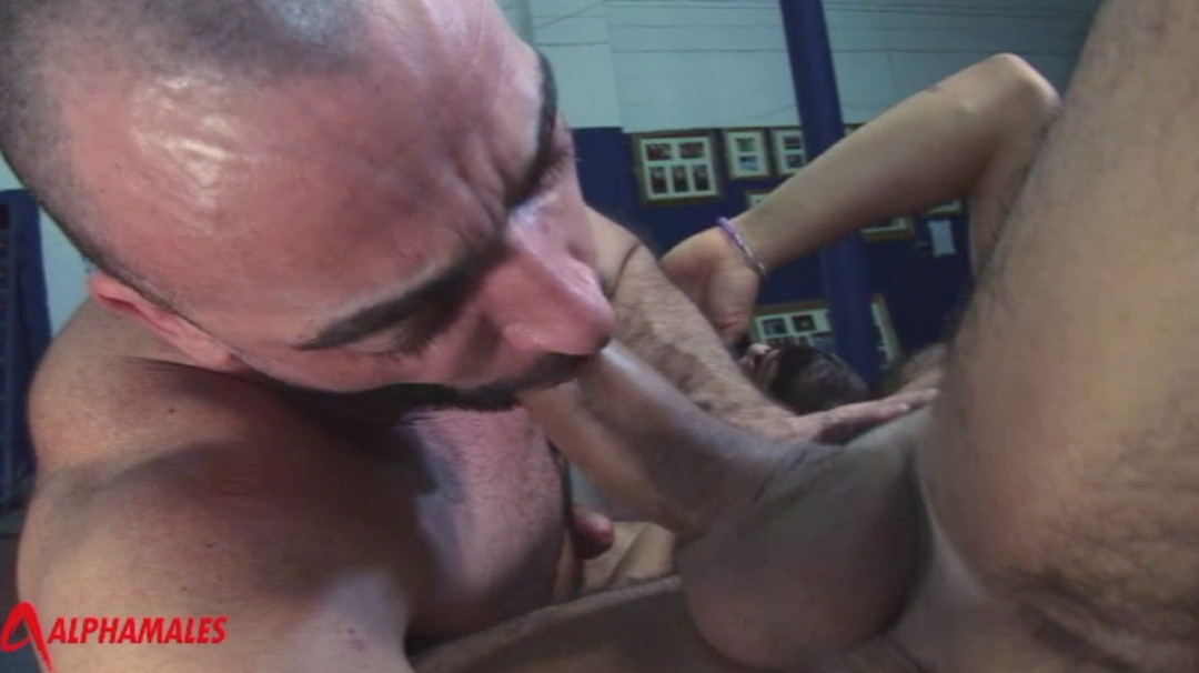 Let's have gay anal sex at the gym !