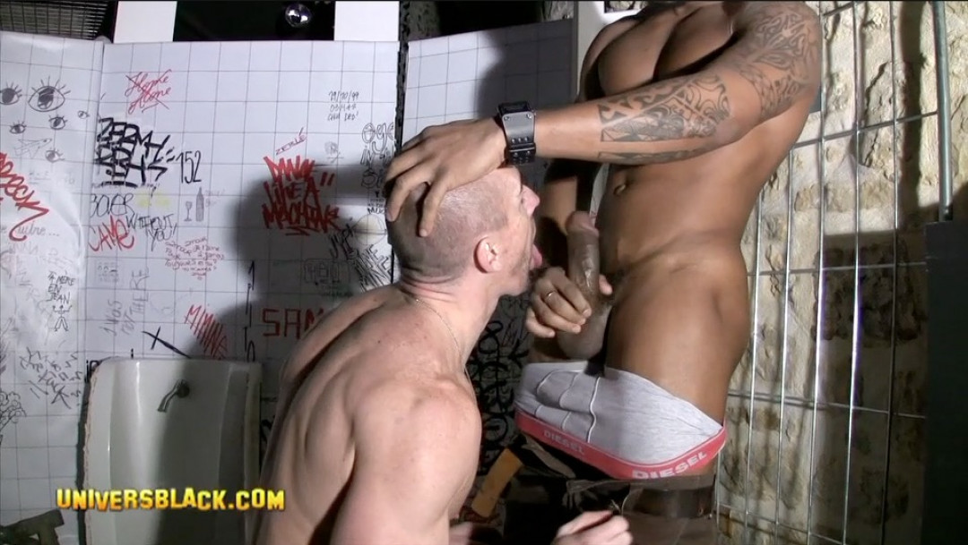 Black cock for white ass
