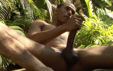l3067-bolatino-gay-sex-porn-latino-flava-men-senior-year-014