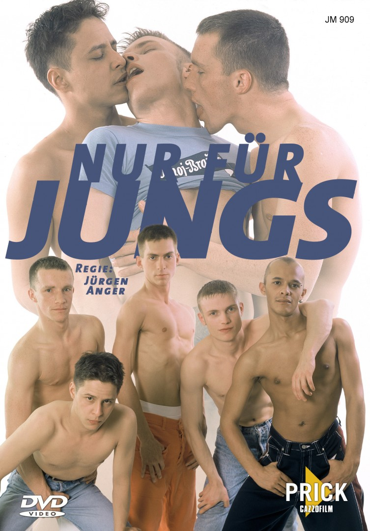 nur-fu-jungs-dvd-cover-copie