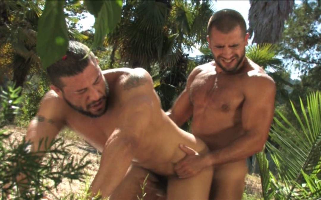 Pure muscles for pure cock-action