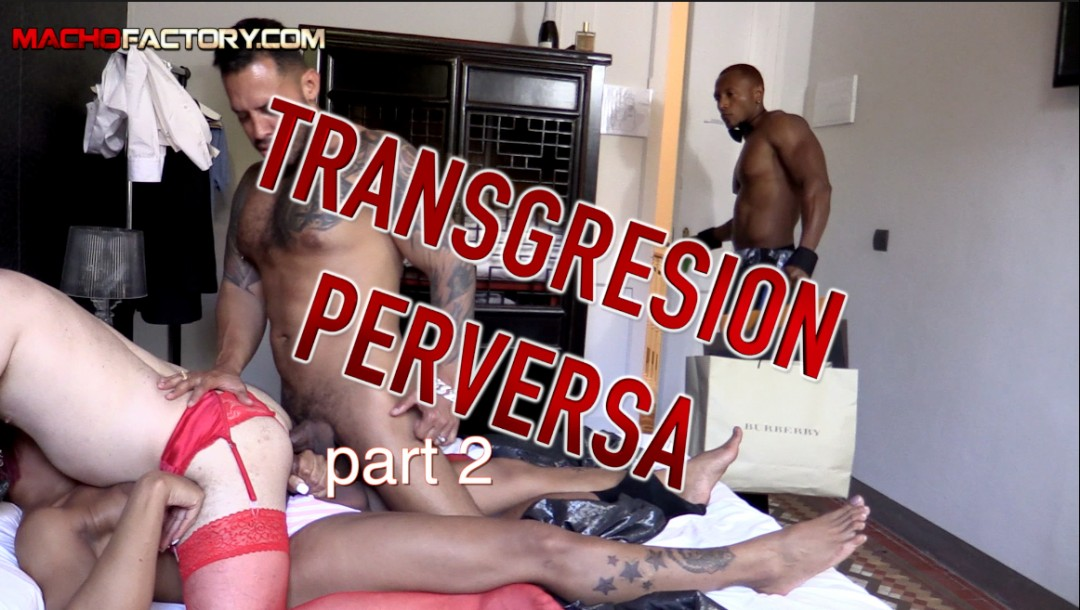 TRANS PERVERSION 2