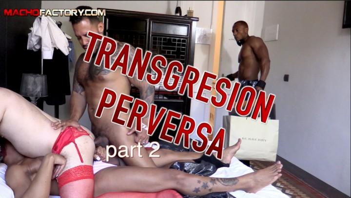 TRANS PERVERSION 2