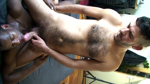 L17882 MISTERMALE gay sex porn hardcore fuck videos bbk bareback butch hairy macho 19