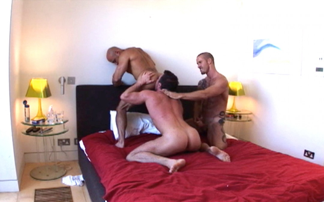 Muscles, sweat and cum x 3