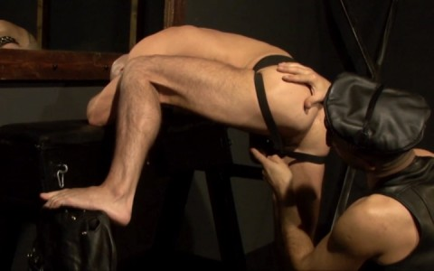 l15817-mistermale-gay-sex-porn-hardcore-fuck-videos-hunks-studs-butch-hung-scruff-macho-03